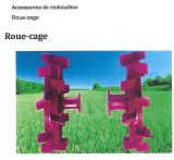 ROUE CAGE
